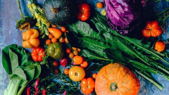 Alimentos para un invierno muy nutritivo